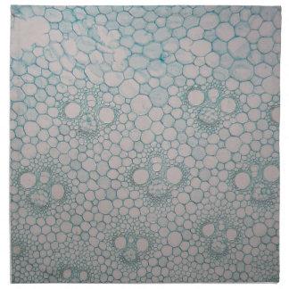 Microscope photo of a bamboo stem. napkin