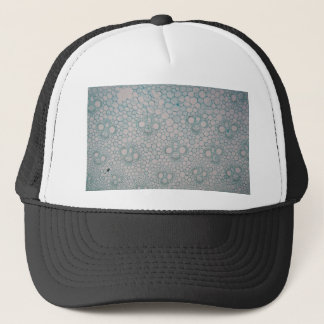 Microscope photo of a bamboo stem. trucker hat