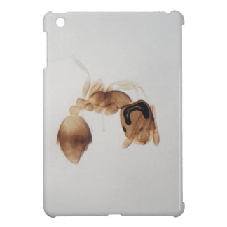 Microscope photo of an ant iPad mini cases