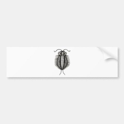 microscopic creature bumper sticker