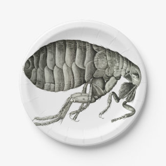Microscopic flea 7 inch paper plate