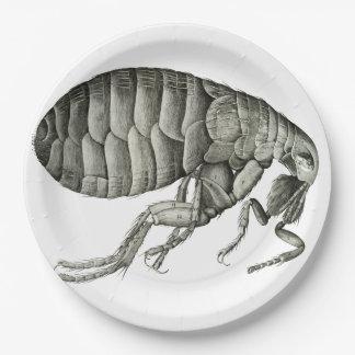 Microscopic flea 9 inch paper plate