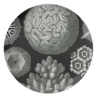 Microscopic Monochrome Plates