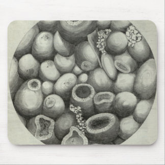 Microscopic rock mouse pad
