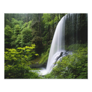Middle North falls, Silver Falls State Park, Photo Print