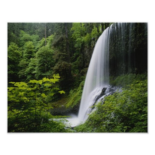 Middle North falls, Silver Falls State Park, Print