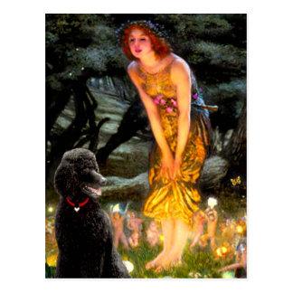 MidEve-Standard Black Poodle (T) Postcard