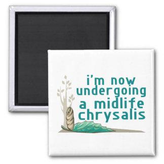 Midlife Chrysalis Magnet