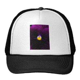 Midnight Blue Trucker Hat
