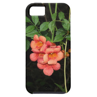 Midnight Flowers iPhone 5 Cases
