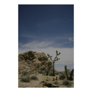 Midnight in the Mojave Poster