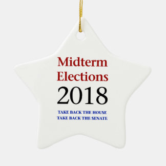 Midterm Elections 2018-Take Back Congress Ceramic Ornament