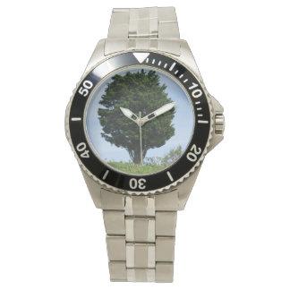Mighty Cedar Wrist Watch