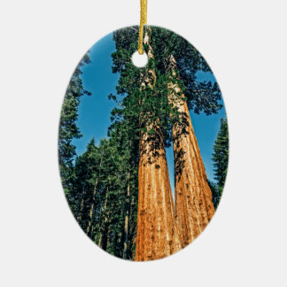Mighty Redwood Ceramic Oval Ornament