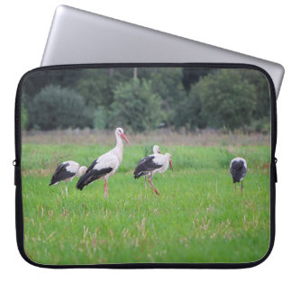 Migrating white storks, ciconia, in a meadow laptop sleeve
