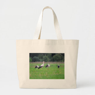 Migrating white storks, ciconia, in a meadow large tote bag