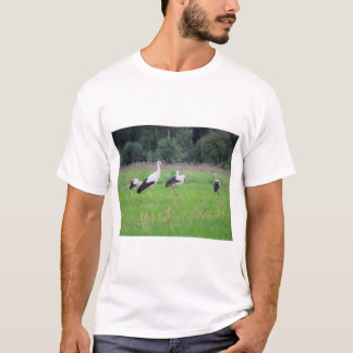 Migrating white storks, ciconia, in a meadow T-Shirt
