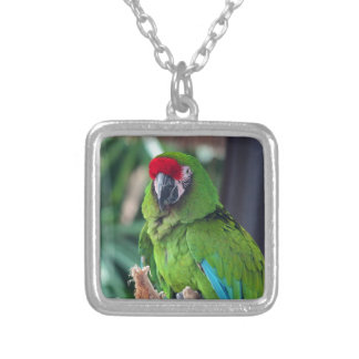 Mike Silver Plated Necklace