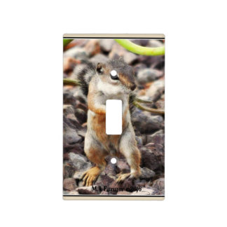 """Mikey"" Light Switch Cover"