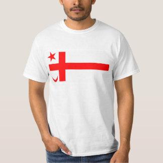 Mikmaq State flag T-Shirt