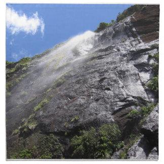 Milford Sound (Piopiotahi) Waterfall Up Close POV Cloth Napkins