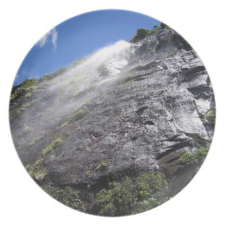 Milford Sound (Piopiotahi) Waterfall Up Close POV Party Plates