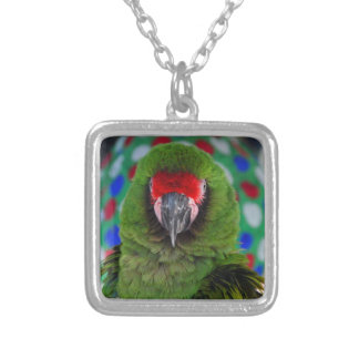 Military Macaw Silver Plated Necklace