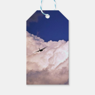 Military Transport Airplane by Shirley Taylor Pack Of Gift Tags
