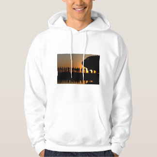 MILITARY TROOP SUPPORT HOODIE