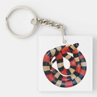 Milk snake Double-Sided square acrylic keychain