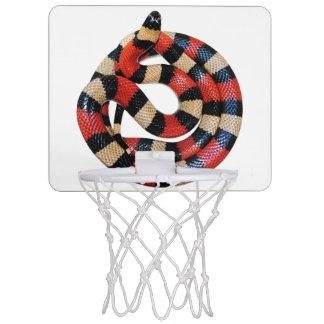 Milk snake mini basketball hoop
