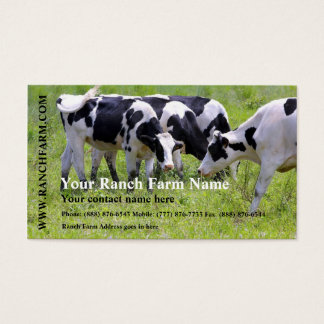 Milking Dairy Cow Cattle Ranch Farm Business Card