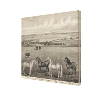 Mill Brae Ranch Kansas Gallery Wrap Canvas