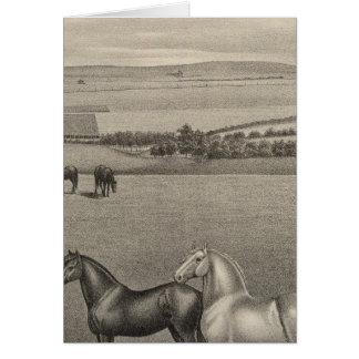 Mill Brae Ranch, Kansas Card