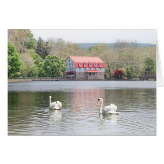 Mill in summer with 2 swans in pond card