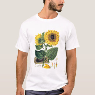 Miller: Sunflower T-Shirt