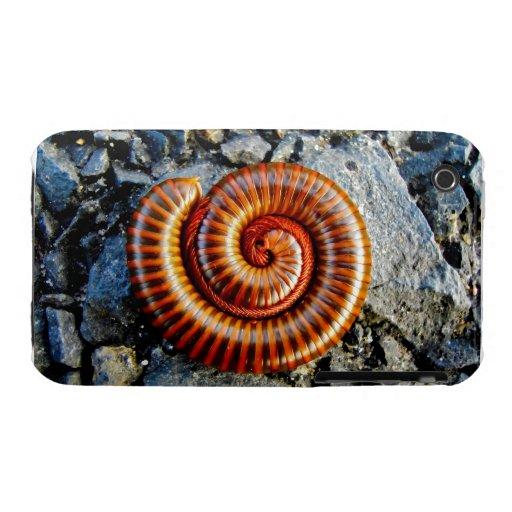 Millipede Trigoniulus Corallinus Curled Arthropod iPhone 3 Case-Mate Cases