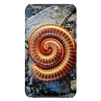 Millipede Trigoniulus Corallinus Curled Arthropod iPod Touch Case