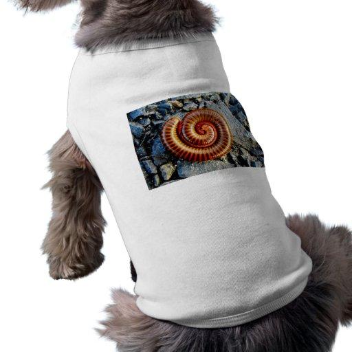 Millipede Trigoniulus Corallinus Curled Arthropod Dog T Shirt
