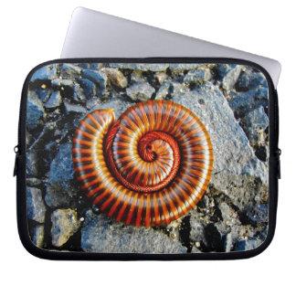Millipede Trigoniulus Corallinus Curled Arthropod Computer Sleeve