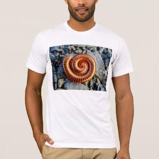 Millipede Trigoniulus Corallinus Curled Arthropod T-Shirt