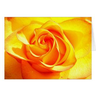 Mimi Rose Card