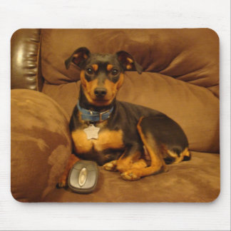 Min Pin Mouse Pad