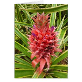 Minature Pink Pineapple Card