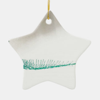Mind Sailing Ceramic Star Ornament