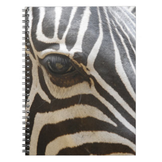 Mindful Zebra Notebook