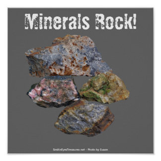 Minerals Rock Collectors Funny Poster