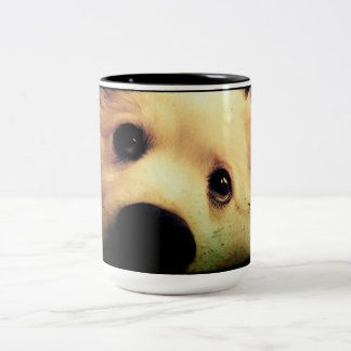 Mini American Eskimo Two-Tone Coffee Mug