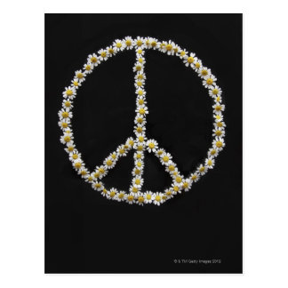 Mini Daisies In a Peace Symbol Postcard
