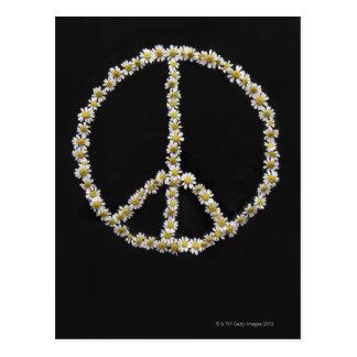 Mini Daisies In a Peace Symbol Postcard
